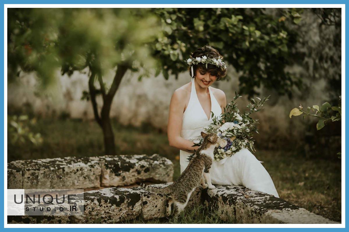 عکس عروس فان